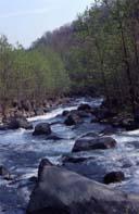 Sikiu River